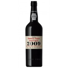 Ramos Pinto Vintage 2009 Quinta Ervamoira Port Wine