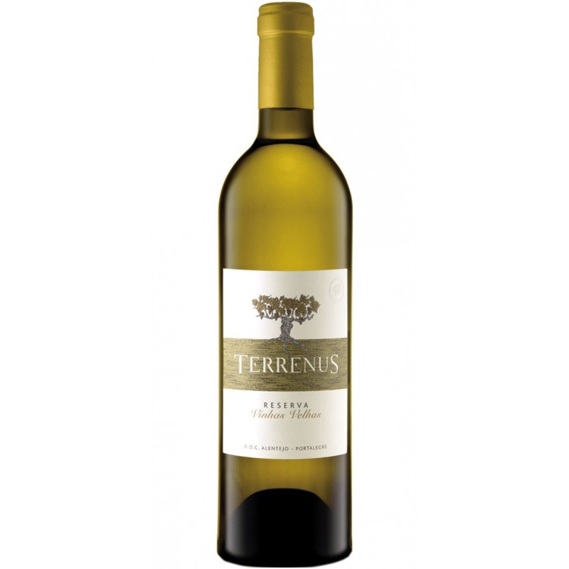 Terrenus Reserva 2016 White Wine