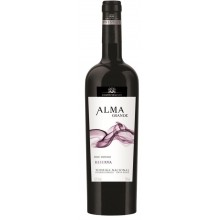 Almagrande Reserva 2010 Red Wine