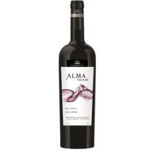 Almagrande Reserva 2012 Red Wine