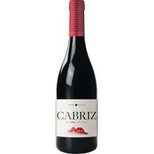 Cabriz Colheita Selecionada 2016 Red Wine