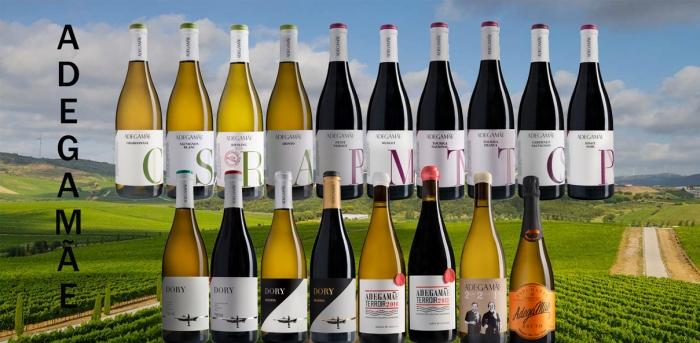 AdegaMãe - wines of Atlantic inspiration