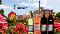 Buçaco Wines: Heritage of Portugal