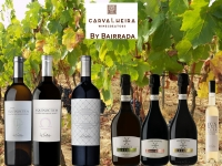 Bairrada Wines by Carvalheira Winecreators