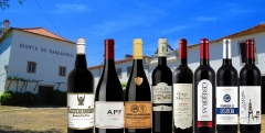 Companhia Agricola do Sanguinhal - wines with history