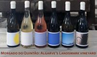 Morgado do Quintao: Algarve's landmark vineyard and farmstay experience