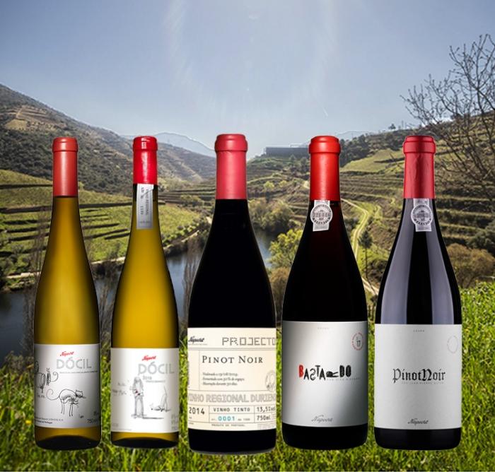 Niepoort's Douro Monocast varieties