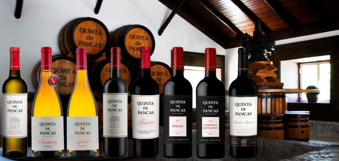 Quinta de Pancas - wines from Lisbon