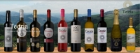 Teoria - Passion for the land, the wine and the Douro...